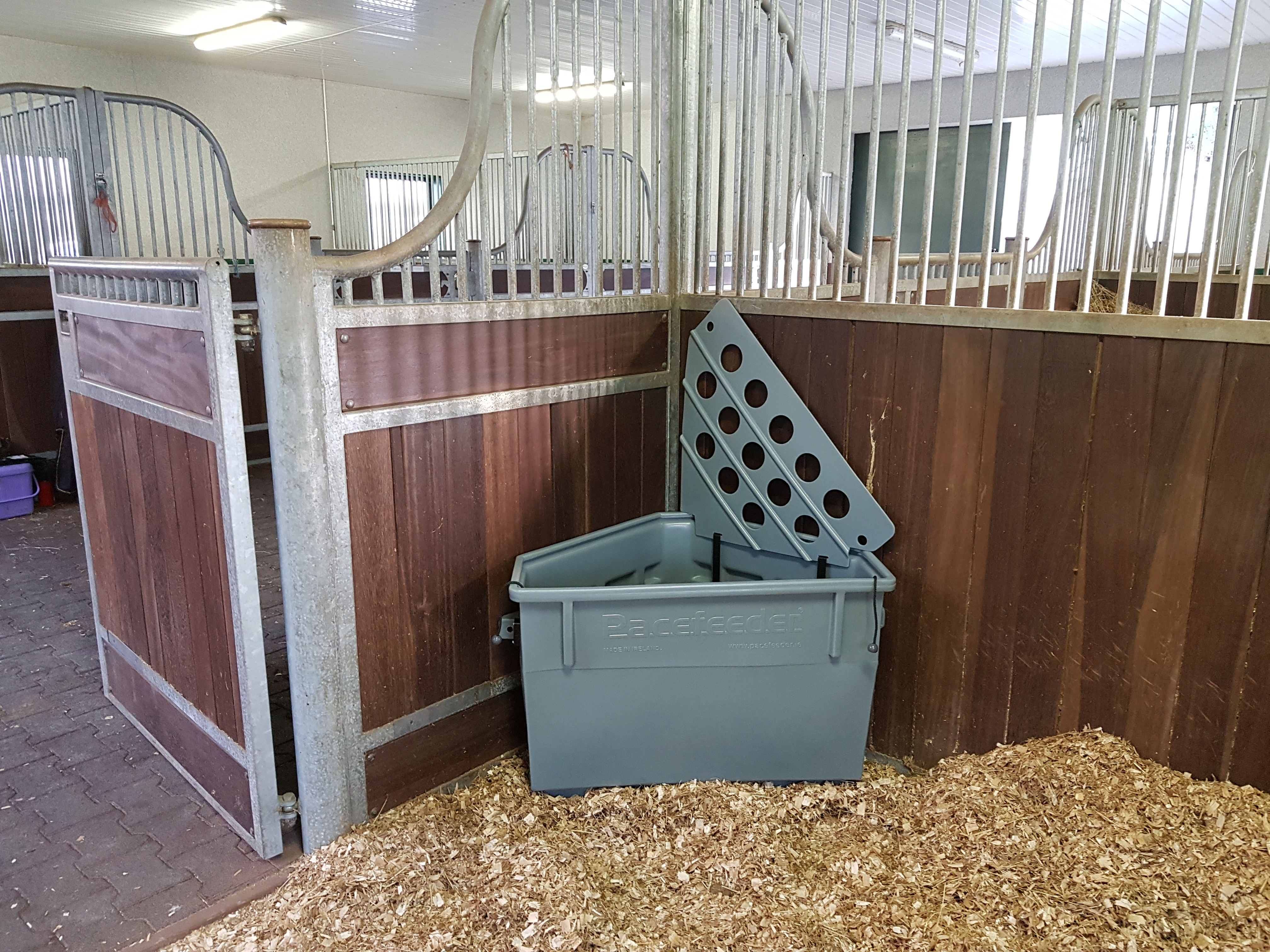 testimonials the system feeder hay pacefeeder feeding shot of horse